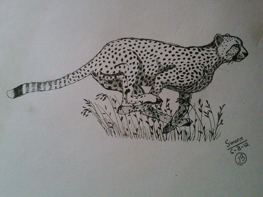cheetah running by art4longlast