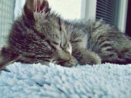 sleeping beauty by darkbylarissa