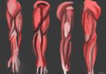 Practice of human arm