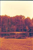 National Wildlife Refuge 1 by Sketchee