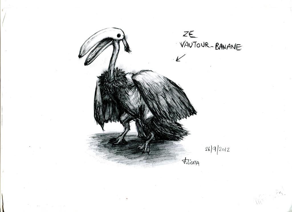 Vautour-Banane by Roddar