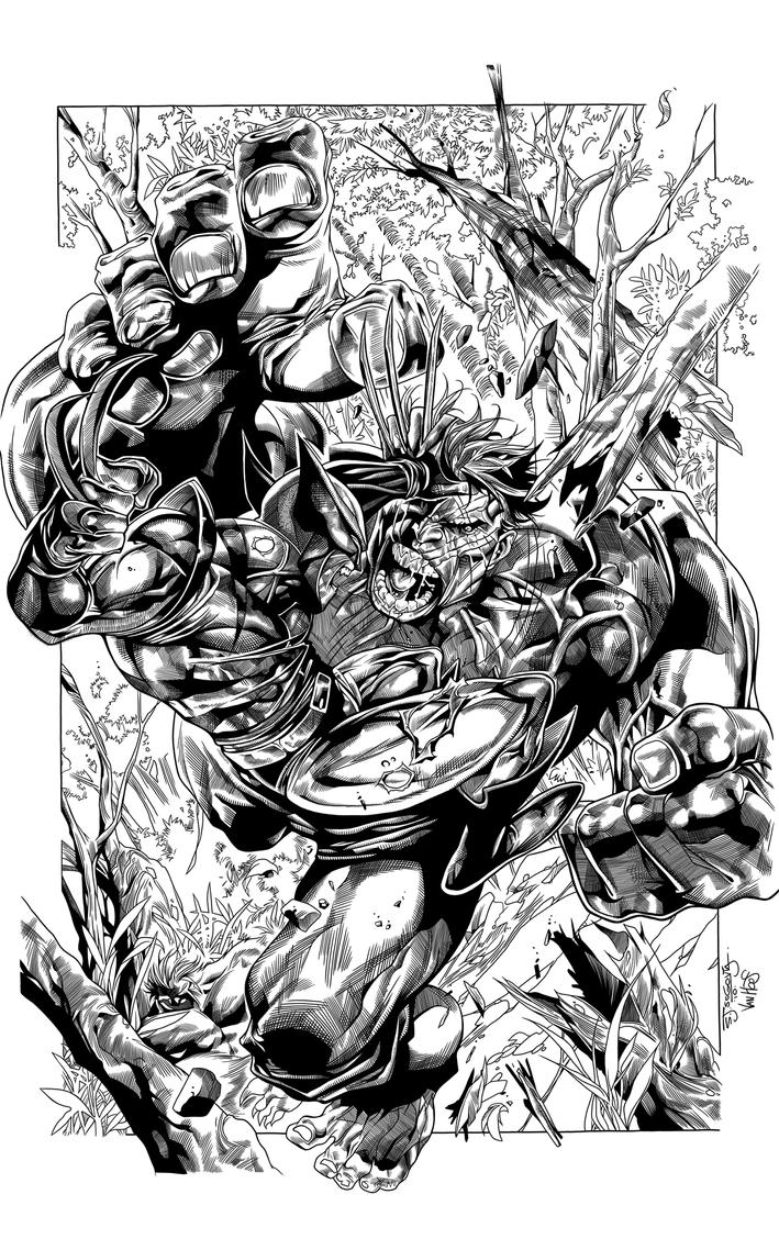 Wolverine vs Hulk by BrenGun