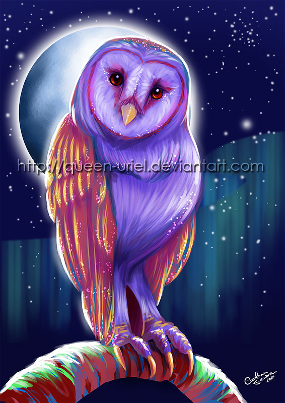 dash of color owl by queen uriel