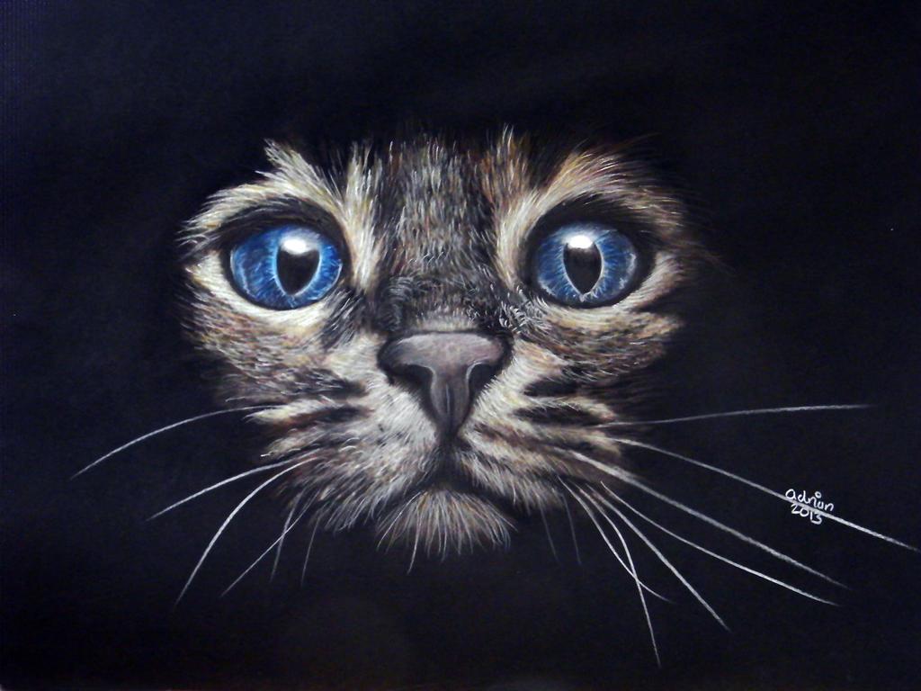 Dexters cat lol by ADRIANSportraits