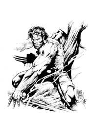 wolvie inked by darnet