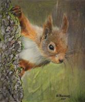Peek-a-boo ! by HendrikHermans