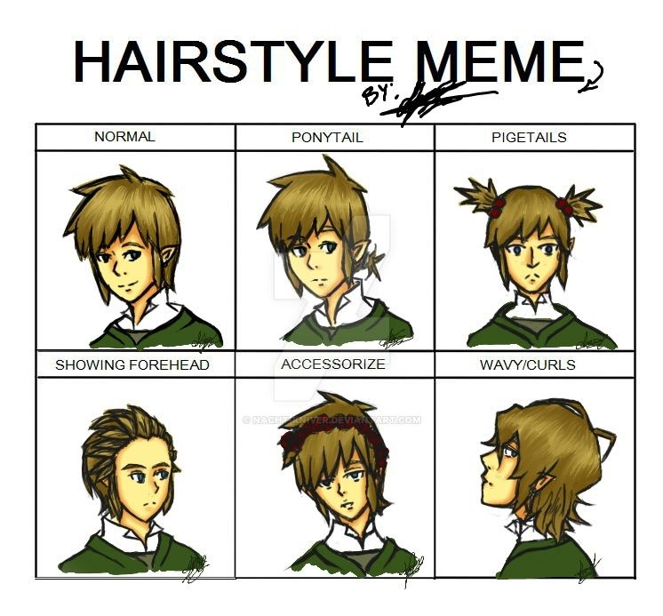 Link Haircut : Legend of Zelda - Link Hairstyle meme by Nacht-Kniver on DeviantArt
