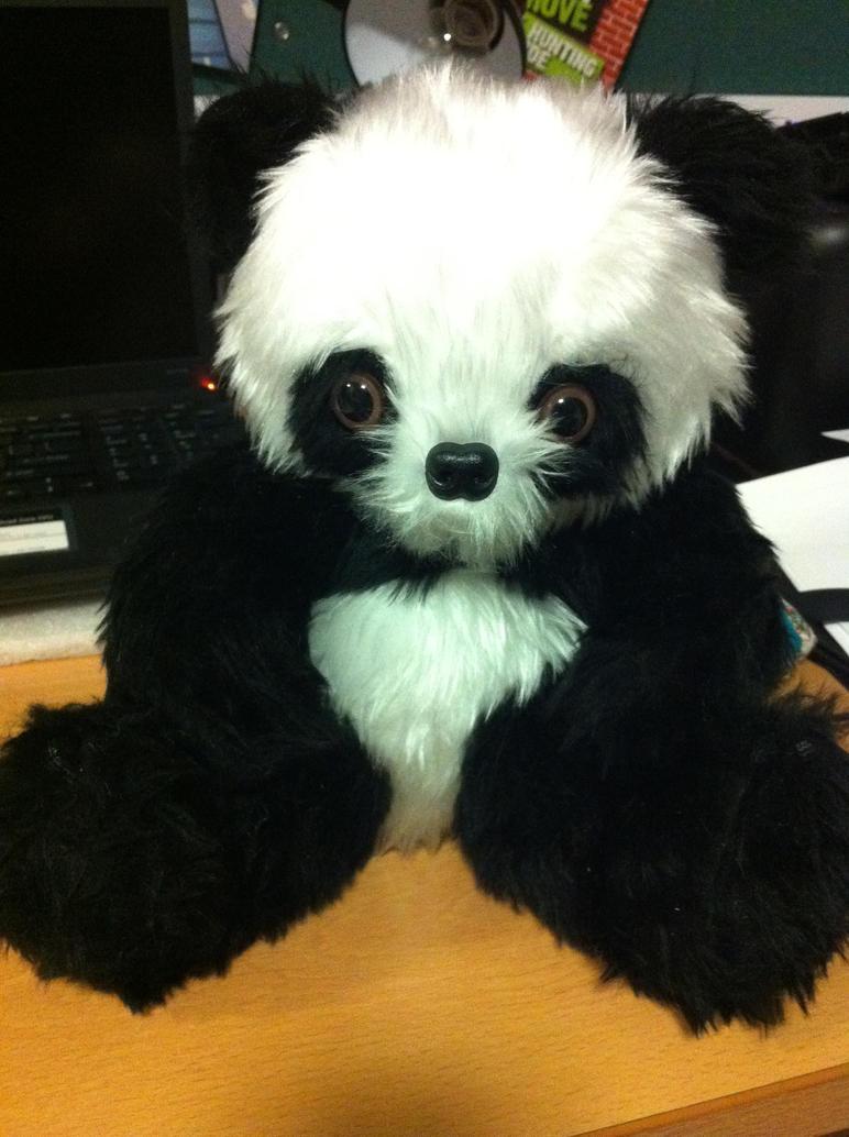 Panda by missmiakomyori