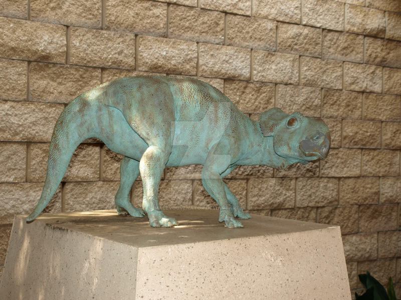 Baby pachyrhinosaurus? by malevouvenator on DeviantArt | 800 x 600 jpeg 189kB