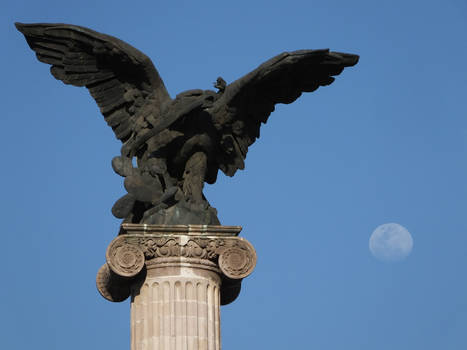 The Eagle and the Moon