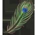 Feather - Green Peacock by Mothkitten