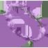 Flower Crown - Lavender by Mothkitten
