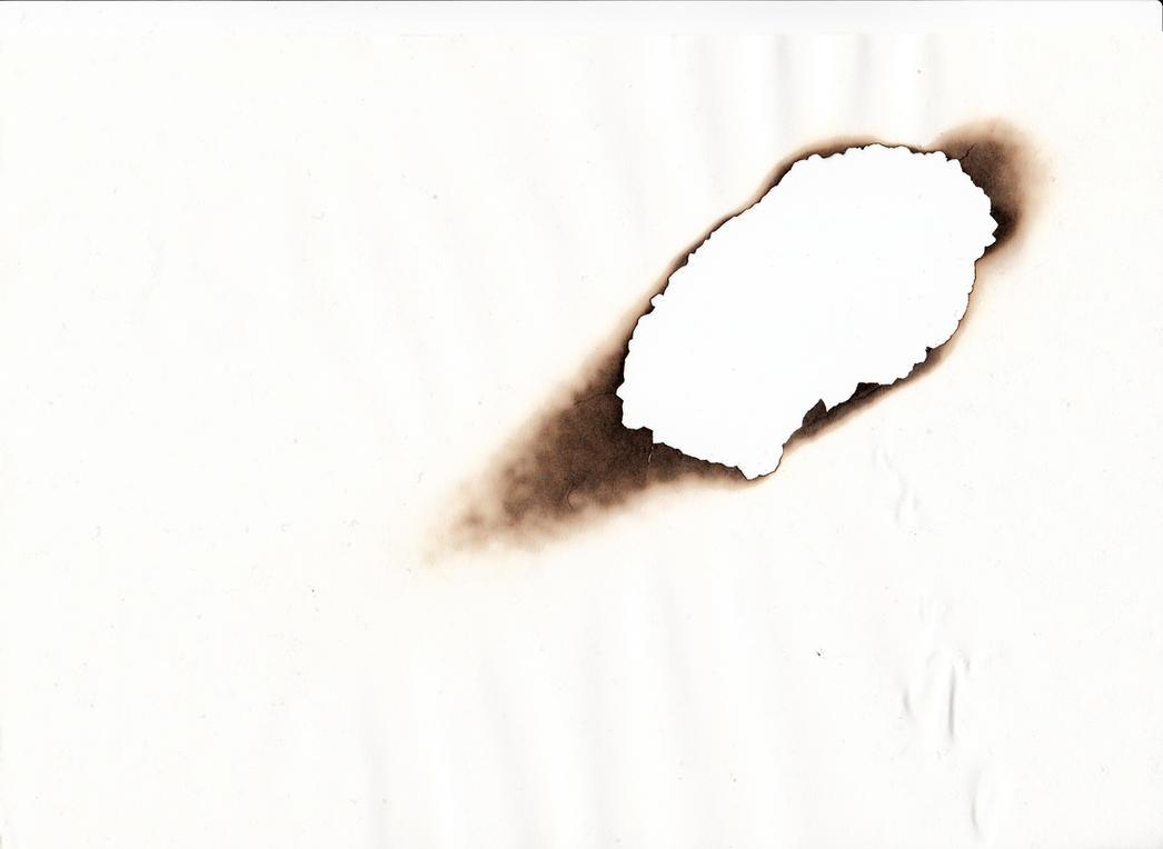 Burnt Circle On Scanner Glass