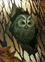Owl by strannaya-anna
