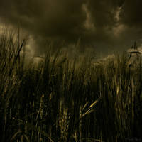 Le monde d'arthur... by wild-vortex