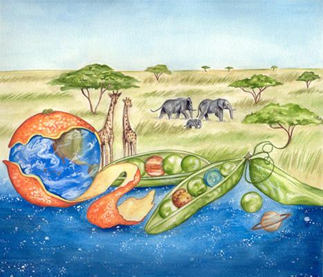 Fruit of the Serengeti