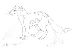 Mint Mongoose