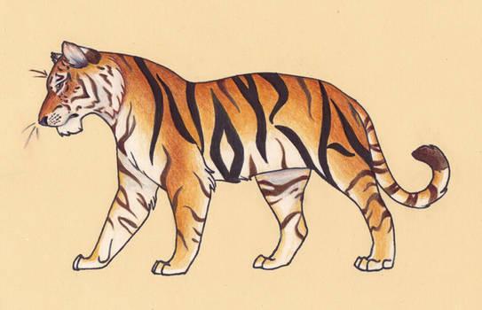 Tiger Tag