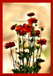 Enchanted Flowers by Tigles1Artistry