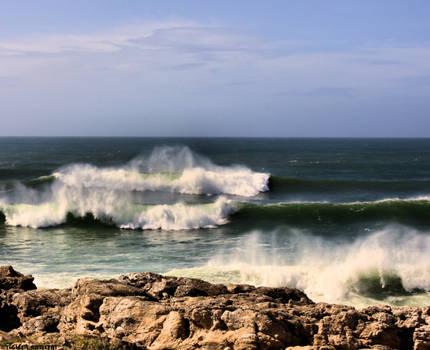 Surfing Sensations....