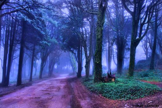 A Path to Eternity for Jocelyne...