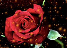 Happy Valentine's Day by Tigles1Artistry