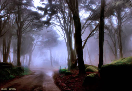 Summer Mist.....