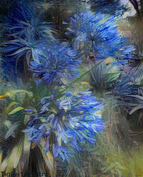 Symphony In Blue...