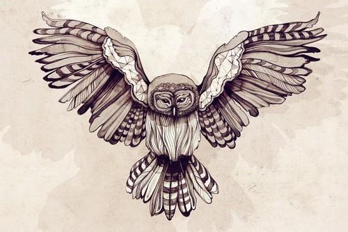 Owl by AlleysAmazingArt