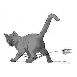 Cat-at by BrianKesinger