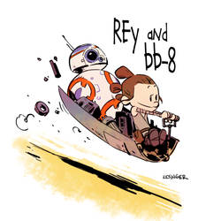 Rey and bb-8