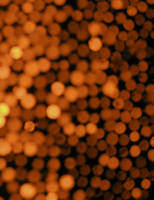 Gold bokeh by CinnamonStock