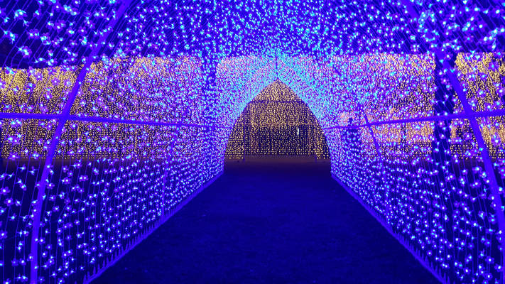 Tunnel of Enlightenment