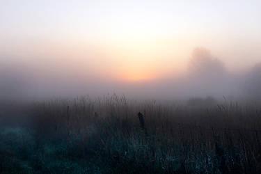 twilight rift