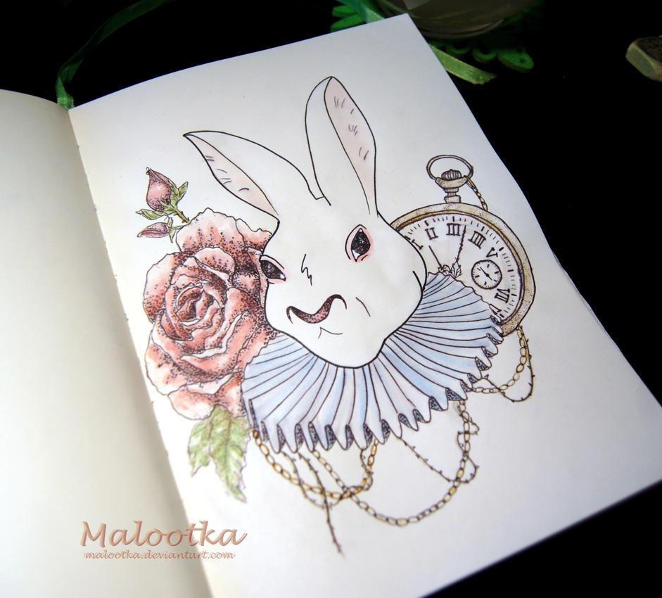 Follow the white rabbit by malootka