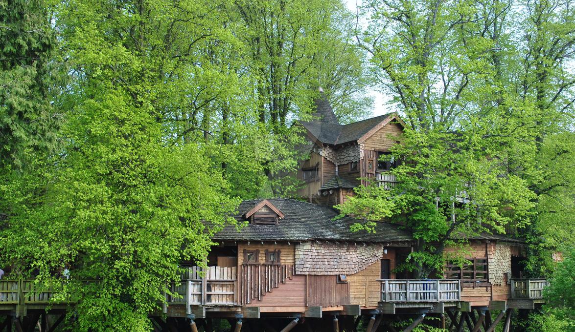 Treehouse by stevenwiddrington