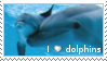 I love dolphins by OmegaDemonFox