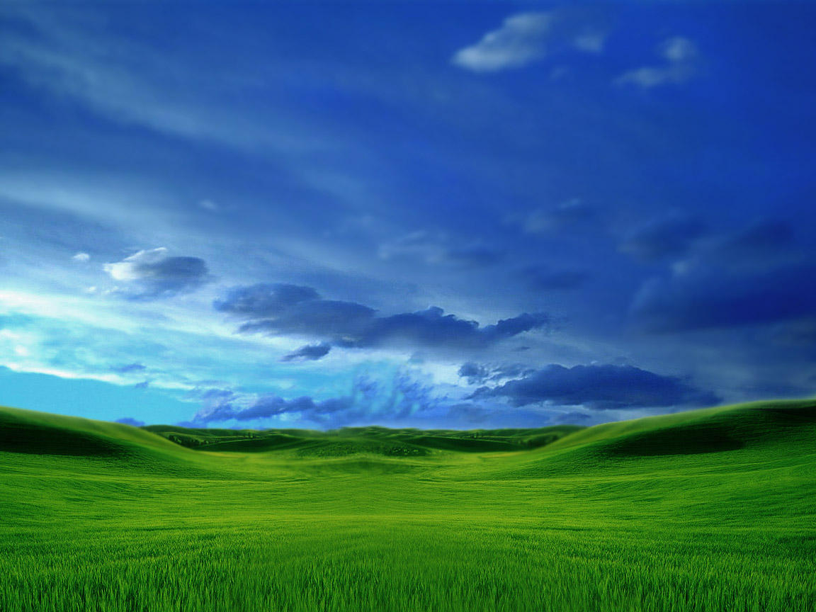 Grassy by judge
