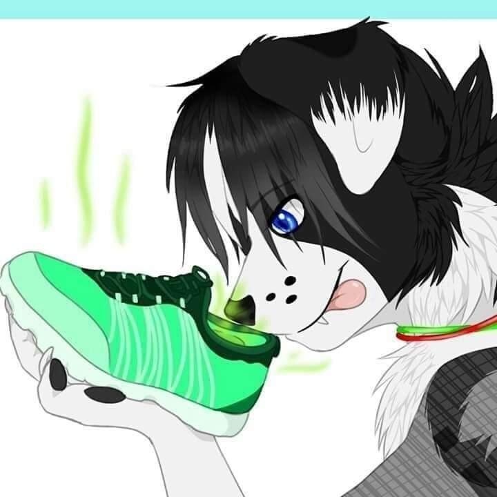 Hiru sniffs her shoe after a long nigh at he club