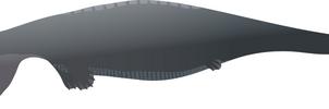 Hupehsuchus sp. (reworked)