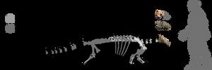 Crichtonpelta benxiensis by lythronax-argestes