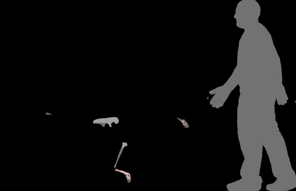 Ganzhousaurus nankangensis by lythronax-argestes