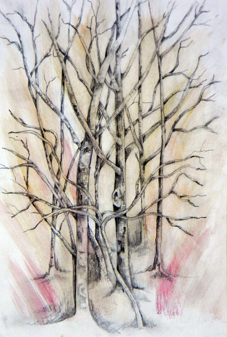 Tea Trees by RockyRoni