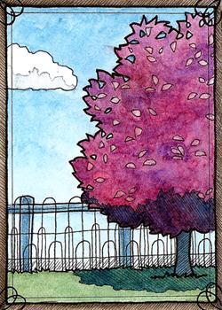 Lovely Purple - ATC by jefita