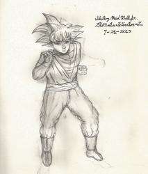 Son Goku by Ph03n1x-Warr1or-Z