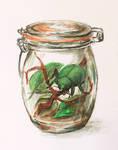 Rita in the Jar