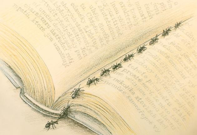 Bookmark by Kiriwana