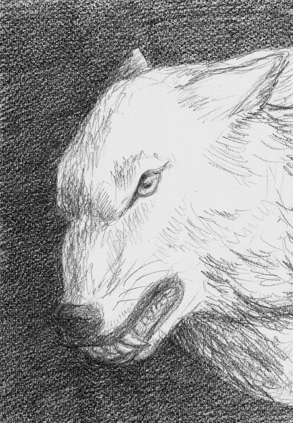 Power of the full moon by Kiriwana