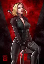 Black Widow, Avengers Infinity War / Endgame by EverHobbes