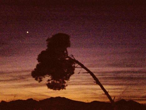 Twilight 3
